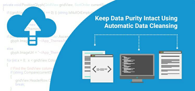 Keep Data Purity Intact Using Automatic Data Cleansing