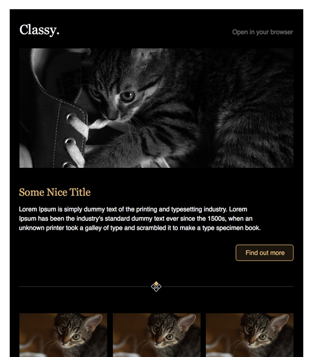 Classy Newsletter Template